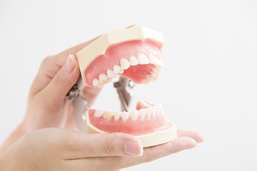 口腔外科(毎週月曜日のみ)